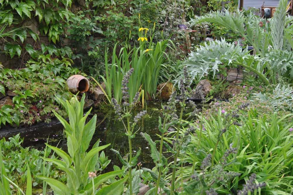 Wettbewerb Blühende Gärten